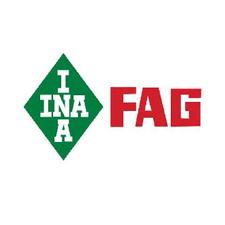 fag-ina